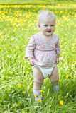 Baby on the nature of Royalty Free Stock Photo
