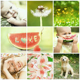 Baby and nature collage Royalty Free Stock Photos