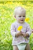 Baby on the nature of holding dandelions Stock Images