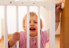 Baby  near  safety gate Stock Images