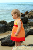 Baby near the sea stock photography
