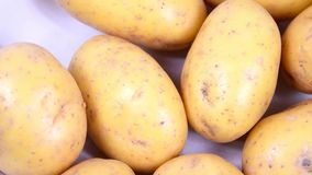 Baby New Potatoes. Close view of Raw Baby new potatoes stock footage