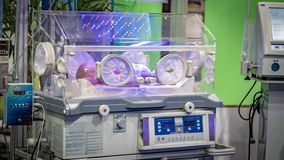 Baby Newborn In Hospital Incubator stock image