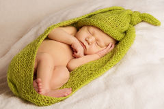 Baby newborn portrait, kid sleeping in woolen. Baby newborn portrait, kid sleeping in green woolen blanket on white background Stock Photography