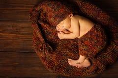 Baby newborn portrait, kid sleeping in woolen hat. On brown wooden background Stock Photography