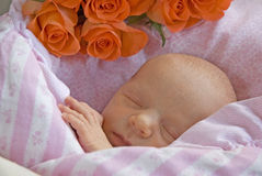 Baby newborn sleeping. Newborn calmly sleeping in pink sheets with a bunch of orange roses behind its head Royalty Free Stock Image