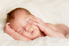 The baby, newly born, lies on the plaid and sleeping, handle the person Stock Photo