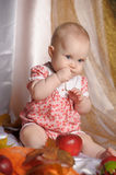 Baby next to a basket of apples Royalty Free Stock Photo