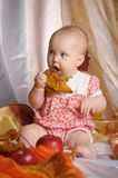 Baby next to a basket of apples Royalty Free Stock Photography