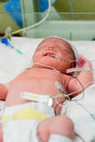Baby In NICU Royalty Free Stock Photography