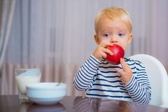 Baby nutrition. Eat healthy. Toddler having snack. Healthy nutrition. Vitamin concept. Child eat apple. Kid cute boy sit. At table with plate and food. Healthy stock image