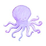 Baby octopus Royalty Free Stock Images