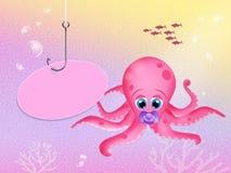 Baby octopus Stock Photos