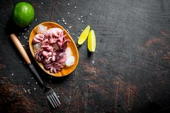 Baby octopus with lime stock photos