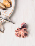 Baby octopus overhead on white wooden Royalty Free Stock Photos
