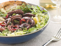 Baby Octopus Salad with Frisse Roquette royalty free stock photography