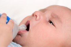 Baby opening mouth and drinking milk from bottle Royalty Free Stock Image