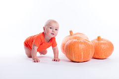 Baby in orange t-shirt on a white background sits next to pumpki royalty free stock photo