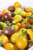 Baby organic heirloom tomatoes upclose Stock Images