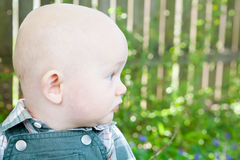 Baby Outside Stock Photo