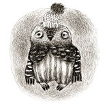 Baby Owl in a Funny Hat Royalty Free Stock Photos
