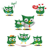 Baby Owl set Stock Images