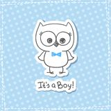 Baby owl Royalty Free Stock Photos