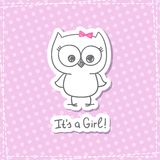 Baby owl Royalty Free Stock Image