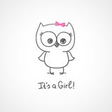 Baby owl Stock Images