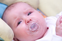 Baby with pacifier. Portrait of a cute baby with pacifier royalty free stock images