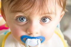 Baby with pacifier. Cute baby with pacifier looking at the camera royalty free stock photography