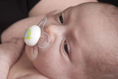 Baby with pacifier in mouth Royalty Free Stock Image