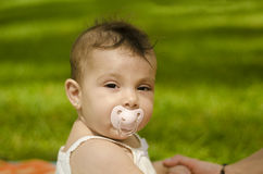Baby and pacifier Stock Image