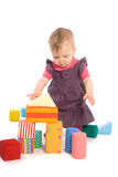 Baby palying with toy blocks. TOYS ARE PROPERTY RELEASED. Little baby girl (9 months old) playing with toy blocks. Isolated on white royalty free stock image