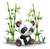Baby panda sitting among bamboo stem. Illustration of Baby panda sitting among bamboo stem Royalty Free Stock Photography