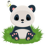Baby panda Royalty Free Stock Images