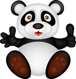 Baby panda with thumb up Stock Photo