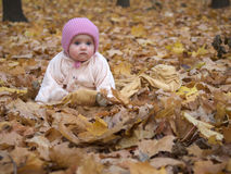 Baby in park. Baby girl with lost expression in autumn park stock photo