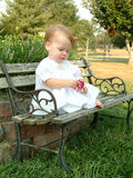 Baby on a Park Bench. Baby sitting on a park bench, pulling petals off of a flower Royalty Free Stock Image
