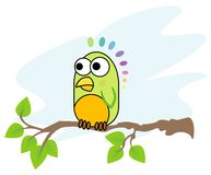 Baby parrot. A small colorful parrot sitting on a branch of a tree Stock Photography