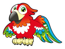 Baby Parrot stock illustration