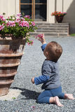 Baby at patio garden Royalty Free Stock Photography