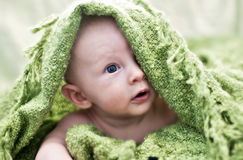Baby peeking from under blanket Royalty Free Stock Image