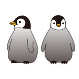 Baby penguin Royalty Free Stock Photo