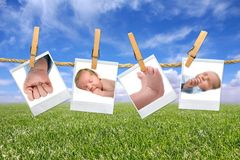 Baby Photographs Hanging Outside Stock Photography