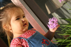 Baby picking a flower. Young girl holding flower stock photo