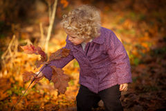 Baby picking up autumn leafs Stock Photos