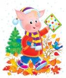 Baby Pig Stock Image