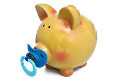 Baby piggy bank Stock Photos