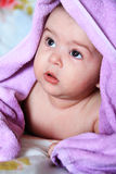 Baby pink Stock Image
